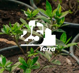 <span>25 let</span>Terra Group